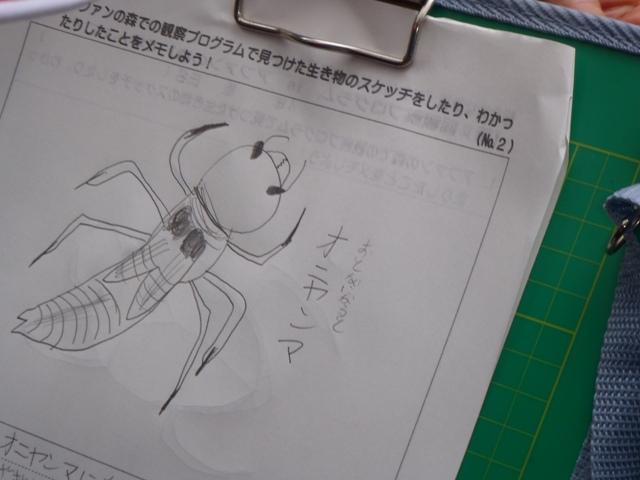 https://afan.or.jp/wp/wp-content/uploads/old/121009_demaejugyo5.JPG