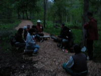 夜の森の雰囲気を味わう