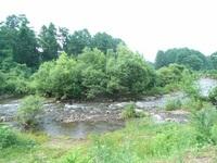 6月27日 よく見ると河原の草が下流に向かって倒れています