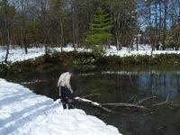 091103_雪で折れた枝を引き揚げる