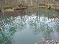 弥生池に映った秋