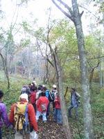 秋のアファンの森を散策