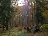 最前線でアファンの森に手を入れている松木と共にアファンを散策します