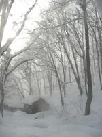 雪煙に消える松木小屋3