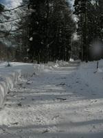 事務所の前の道