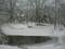 弥生池から左へパーン
