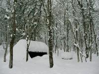 雪に埋もれそうなサウンドシェルター