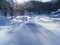 深く降り積もった雪