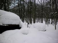 サウンドシェルターに降り積もった雪