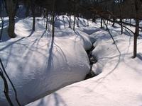雪どけ水の小川