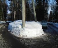 雪どけの道