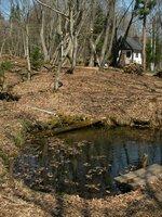 松木小屋前の池