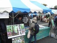 アースデイ東京2010 ブース