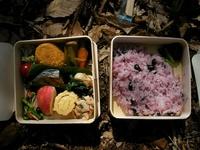 癒しの森のお弁当。これがうまい!