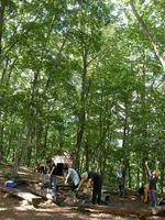 アファンの森の中でゆっくり深呼吸