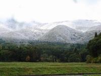 2010年の初雪