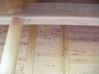 センターの壁のクモの巣