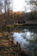 アファンセンターからアファンの森へ散策に出かけました
