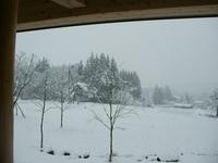 事務所の窓から見える雪景色