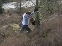 (写真03)木を切り倒す