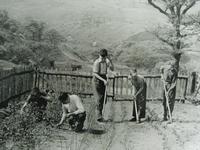 苗木を育てる風景(アファン森林公園ビジターセンター提供)