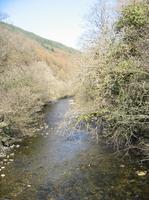 アファンの谷の川縁