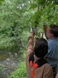 松木も加わり、ヤマザクラの枝先を二人で真剣に見ています。