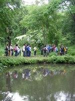 松木と共に散策