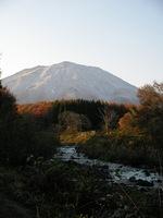 111116_toriigawa.JPG