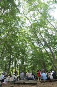 復興心の森8月 森の集合場所