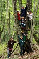復興心の森8月 木の上みんなで