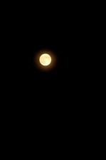 120801_心の森満月.JPG