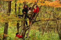 10/28 いろんな木に登りました