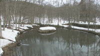 2013年3月20日の弥生池