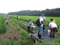 0729_nakashimo1.jpg