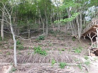 140603_th-after.JPG